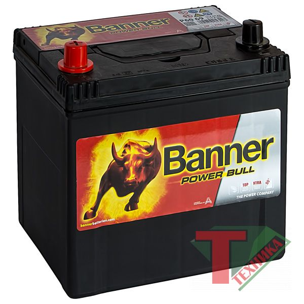 АКБ Banner Power Bull P60 69